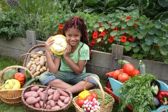 Veille et engagement sur la question alimentaire et les services publics citoyens responsables