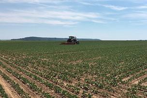 L'agriculture post-glyphosate et autre herbicide exige un nouveau modèle de production - Le choix de construire un nouveau modèle alimentaire plus économique , plus coopératif et moins dangereux