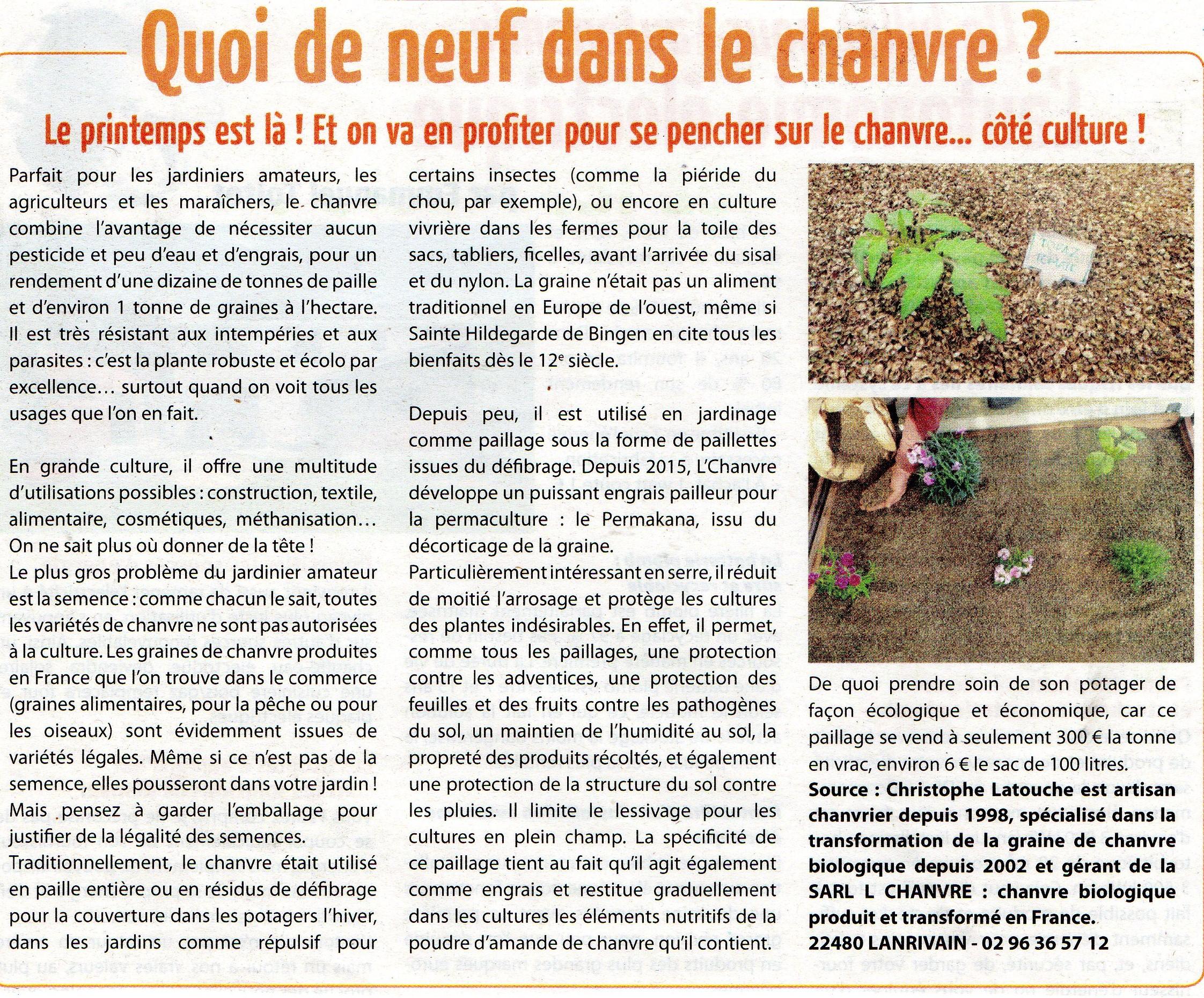 Le chanvre culture d'avenir en Pays Midi-Quercy, en Pays d'OC ?